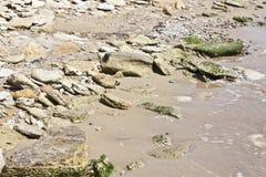 Nadmorski z dużymi kamieniami zdjęcia stock