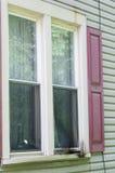 Nadokienna parawanowego okno foka Obrazy Stock