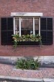 Nadokienny pudełko z roślinami Zdjęcia Royalty Free