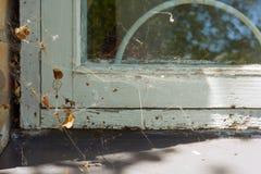 Nadokienny szczegół w domu z białą drewnianą krakingową ramą i zawijającym w pajęczynie Fotografia Royalty Free