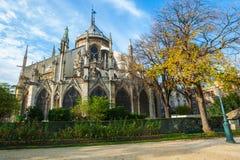 Nadruk op voorgrondbloemen Mening mooie Notre Dame Cathedral royalty-vrije stock afbeeldingen