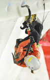 Nadya Gallyamova (Rusia) no campeonato mundial de escalada do gelo de UIAA da taxa 2015 de Saas Fotos de Stock