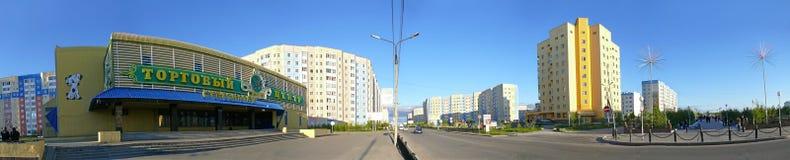 Nadym,俄罗斯- 2008年7月10日:全景 都市的横向 库存图片