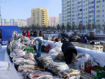 Nadym, Russia - March 15, 2008: Trading in meat and fish on the Royalty Free Stock Images
