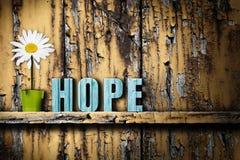Nadzieja teksta słowa waza z stokrotką na przetartym drewnianym tle Fotografia Royalty Free