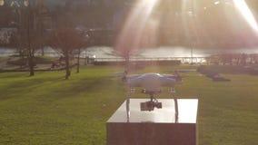 Nadziemscy złoci słońce promienie na białym trutniu - parkowy tło zbiory wideo