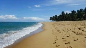 Nadziemski krajobraz przy gunga plażą, Brasil Zdjęcia Royalty Free