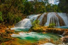 Nadzwyczajna siklawa w Meksyk, krajobraz z siklawa widoku Agua Azul blisko Palenque Chiapas Zdjęcie Stock