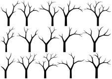 nadzy drzewa Obrazy Royalty Free