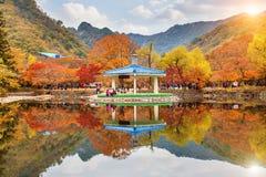 Naejangsan National Park in Autumn,South Korea Stock Photography