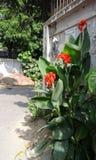 Naem Road Stock Photos