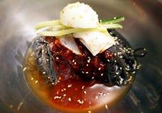 Naengmyeon или  n raengmyÅ, корейское блюдо лапши стоковое изображение rf