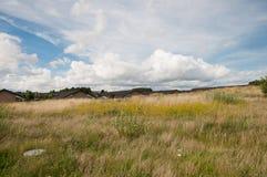 Naestved的郊区在丹麦 免版税库存图片