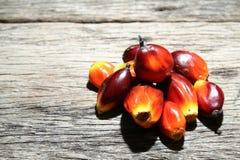 Nafcianej palmy owoc - serie 3 Fotografia Stock