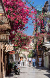 Nafplio Blooming Street Greece Stock Photography