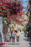 Nafplio Blooming Street Greece Royalty Free Stock Image