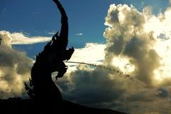 Naga короля Стоковая Фотография