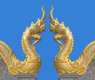 Naga смотря на один другого в голубом небе стоковые изображения rf