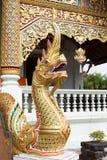 Naga традиционный на виске Стоковые Изображения