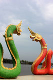 Naga Fotografia de Stock Royalty Free