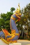 Naga Fotografie Stock
