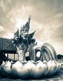 Naga Zdjęcie Royalty Free