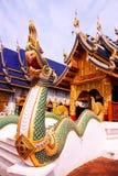 Naga Photographie stock libre de droits