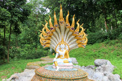 Naga buddha image Stock Photos