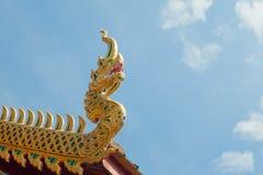 Naga do formulário do projeto do telhado Imagem de Stock