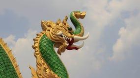 Naga dos animais da fantasia grande fotos de stock royalty free