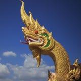 Naga dourado Fotografia de Stock