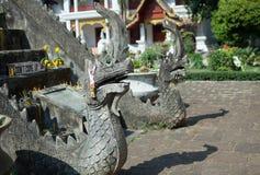 Naga en Tailandia Imagen de archivo