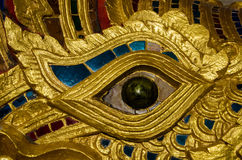Naga Eye close up Stock Images