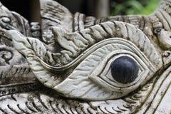 Naga eye Stock Photos