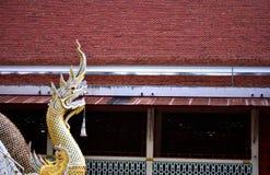 Naga grand Image libre de droits