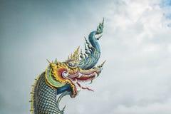 Naga hoofdstandbeeld Stock Foto's
