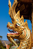 Naga i Wat Phra Singh, Chiang Mai, Thailand Royaltyfri Fotografi
