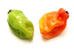 Naga Morich Stock Photos