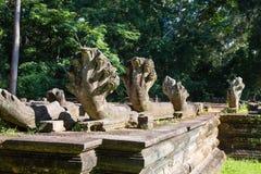 Naga nel tempio di Chausaytevoda Immagine Stock Libera da Diritti