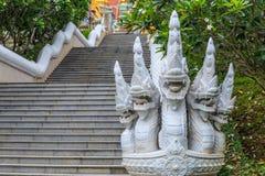 Naga oder der König der Schlange lizenzfreies stockfoto