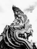 Naga potente Fotografia Stock