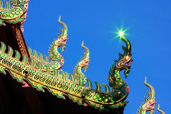 Naga and reflective light Royalty Free Stock Images