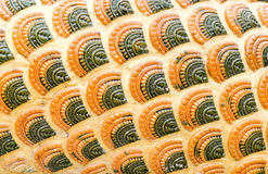 Naga scale pattern,texture background Royalty Free Stock Images