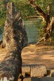 Naga serpent statue Royalty Free Stock Photo