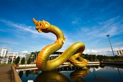 Naga in side under view Stock Photo