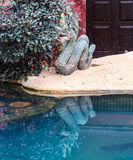 Naga statue Royalty Free Stock Photography