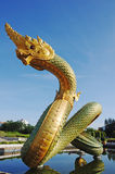 Naga sullo stagno con cielo blu. fotografia stock libera da diritti