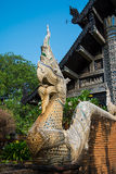 Naga in Temple at Chiang Mai, Thailand Royalty Free Stock Image