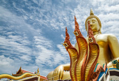 Naga in temple. Naga is a mythological animal in Buddhism Royalty Free Stock Images