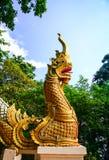 Naga Stock Images